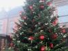 k-harburg-weihnachtsmarkt-2012-020