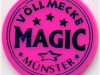 voellmecke-magic-chip